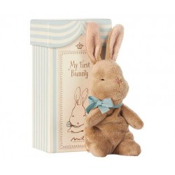  MEIN ERSTER HASE IN BOX,...