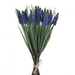 Hyazinthenbund blau