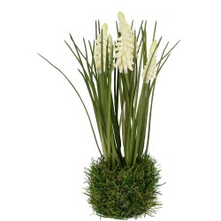 Hyazinthe auf Grasballen weiß