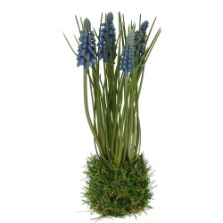 Hyazinthe auf Grasballen blau